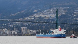 Question Period: More on the dodgy economic case for the Trans Mountain pipeline