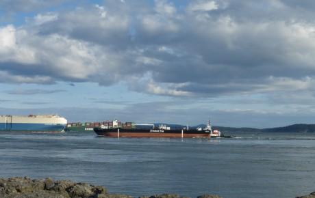 Marine Traffic Paul Petrie photo