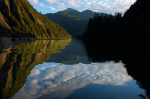 An Historic Agreement for the Great Bear Rainforest