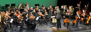 Oak Bay Orchestra Concert photo