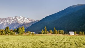Introducing a Bill to Protect British Columbia's Farmland